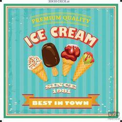 Obraz ICE CREAM BEST IN TOWN PTD079T1