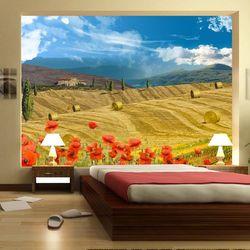 Fototapeta - Jesienny krajobraz bogata chata