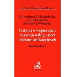 Ustawa o wspieraniu rozwoju usług i sieci telekomunikacyjnych Komentarz [Grossmann Tomasz, Knopkiewicz Wacław, Sebzda-Załuska Joanna] (opr. miękka)