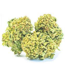 Susz konopny z CBD 12,5% Super Lemon Haze bez THC 2g Cbweed 2g