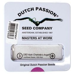 Nasiona konopi CBD Dutch Passion - CBD Auto Charlotte's Angel (Fem.) 3szt
