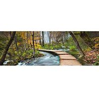 Fototapety, Fototapeta Path into the Forest 436