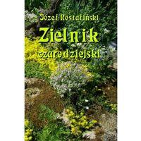 E-booki, Zielnik czarodziejski to jest zbiór przesądów o roślinach - Józef Rostafiński (PDF)