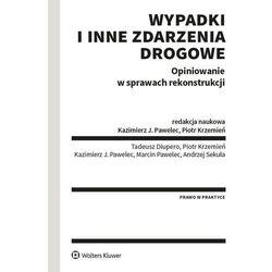 Wypadki i inne zdarzenia drogowe - praca zbiorowa (opr. broszurowa)