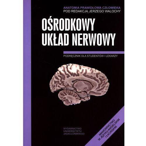 Książki medyczne, Ośrodkowy układ nerwowy Anatomia prawidłowa człowieka (opr. broszurowa)