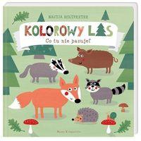 """Książki dla dzieci, Książka """"Kolorowy las. Co tu nie pasuje?"""" wydawnictwo Nasza Księgarnia 9788310133168"""