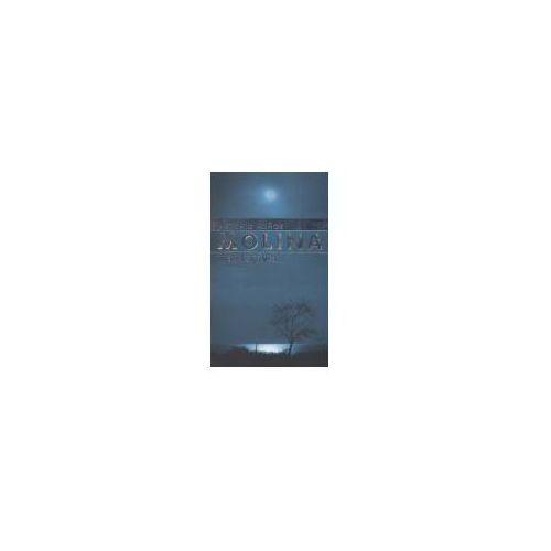 Literatura młodzieżowa, Wiatr księżyca (opr. broszurowa)