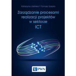 ZARZĄDZANIE PROCESAMI REALIZACJI PROJEKTÓW W SEKTORZE ICT - wyprzedaż (opr. miękka)