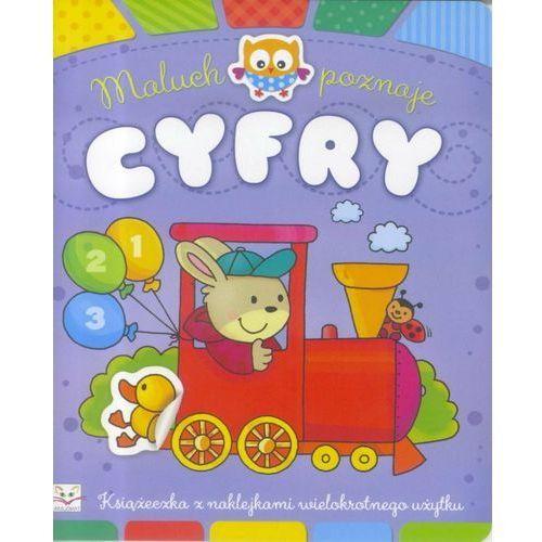Książki dla dzieci, Maluch poznaje cyfry - Praca zbiorowa (opr. broszurowa)