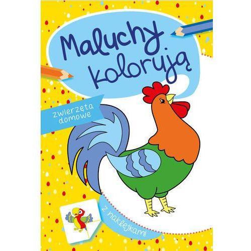 Książki dla dzieci, Maluchy kolorują zwierzęta domowe - Praca zbiorowa