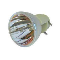 Lampa do BENQ W1070 - oryginalna lampa bez modułu