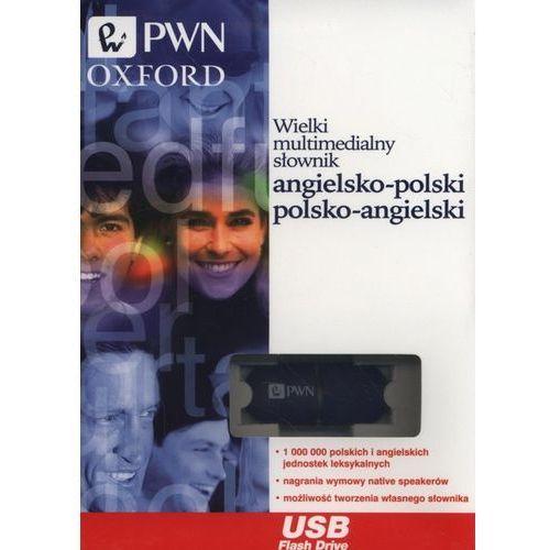 Słowniki, encyklopedie, Wielki multimedialny słownik angielsko-polski, polsko-angielski Pendrive (opr. kartonowa)