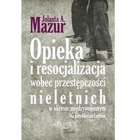 Pedagogika, Opieka i resocjalizacja wobec przestępczości nieletnich W okresie międzywojennym na przykładzie Lublina (opr. miękka)