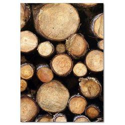 Foto obraz szkło hartowane Kłody drewna