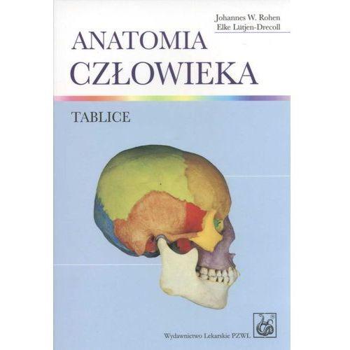 Książki medyczne, Anatomia człowieka. Tablice anatomiczne (opr. miękka)