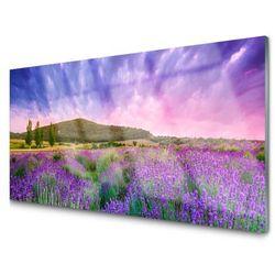 Obraz Akrylowy Łąka Kwiaty Góry Natura