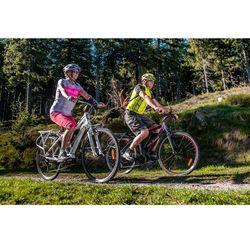 Crussis Męski trekkingowy rower elektryczny Crussis e-Gordo 1.2, 20