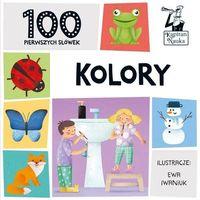 Książki dla dzieci, Kapitan Nauka. 100 pierwszych słówek. Kolory (opr. twarda)