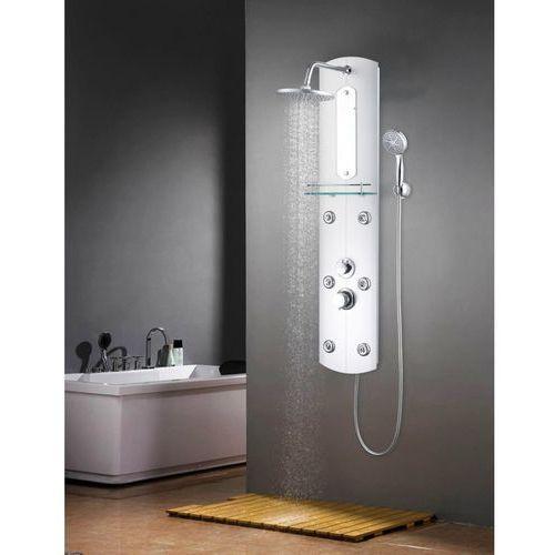 Panel prysznicowy, 25 x 43 x 120 cm, srebrny marki Vidaxl