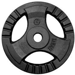 Obciążenie żeliwne do sztangi grafitowe (28,5 mm) 20 kg - 20 kg
