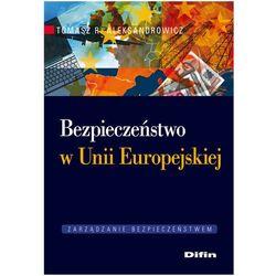Bezpieczeństwo w Unii Europejskiej (opr. miękka)