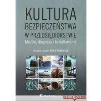 Książki o biznesie i ekonomii, Kultura bezpieczeństwa w przedsiębiorstwie. Modele, diagnoza i kształtowanie (opr. miękka)