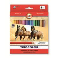 Kredki, Kredki KOH-I-NOOR Triocolor 36 kolorów 3145