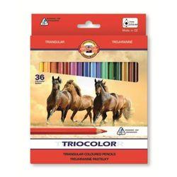 Kredki KOH-I-NOOR Triocolor 36 kolorów 3145