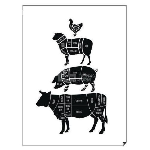 Plakaty, Plakat Meat Cuts ed. spring 2016 30 x 40 cm