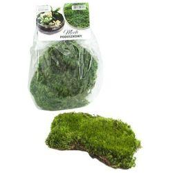 Mech poduszkowy 40 g do lasu w słoiku