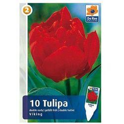 Tulipany Viking