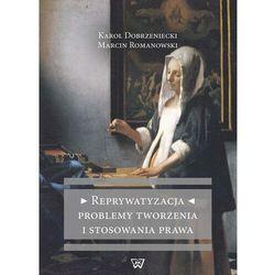 Reprywatyzacja Problemy tworzenia i stosowania prawa - Marcin Romanowski - ebook