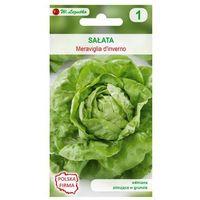Nasiona, Sałata głowiasta masłowa MERAVIGLIA D'INVERNO nasiona tradycyjne 0.5 g W. LEGUTKO