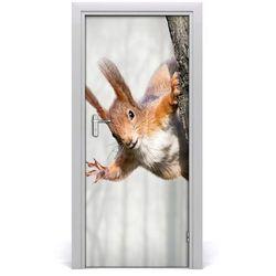 Naklejka samoprzylepna na drzwi Wiewiórka na drzewie