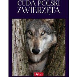 Cuda Polski Zwierzęta - Łukasz Przybyłowicz (opr. twarda)