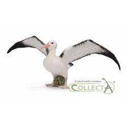 CollectA 88765 Albatros wędrowny, rozmiar: L