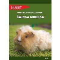 Hobby i poradniki, Świnka morska - Gorazdowski Marcin Jan (opr. miękka)