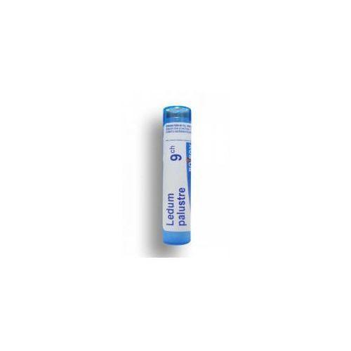Homeopatia, BOIRON Ledum Palustre 9 CH granulki 4 g
