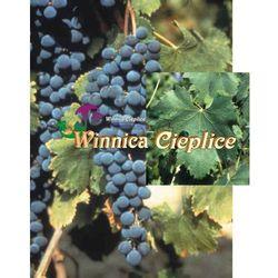 Sadzonki winorośli Friesa rabat 8%