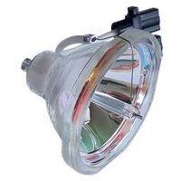 Lampy do projektorów, Lampa do LIESEGANG ZU0205 04 4010 - kompatybilna lampa bez modułu
