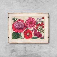 Plakaty, Plakat retro Plakat retro Reprodukcja grafiki różowego kwiatu
