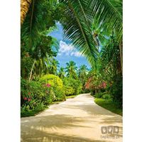 Fototapety, Fototapeta Tropical Pathway 438