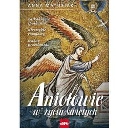 Aniołowie w życiu świętych (opr. miękka)