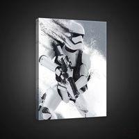 Obrazy, Obraz STAR WARS: PRZEBUDZENIE MOCY - Stormtrooper PPD1930