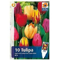 Tulipany Single Early mix