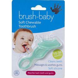 Brush-Baby - gryzak połączony ze szczoteczką dla dzieci w wieku 10-36 m-cy kolor zielony