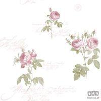 Tapety, Tapeta ścienna w róże róża Fleurs et Toiles CG28820 Galerie Bezpłatna wysyłka kurierem od 300 zł! Darmowy odbiór osobisty w Krakowie.