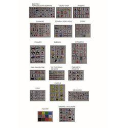 Mega zestaw piktogramów (obrazków tematycznych)