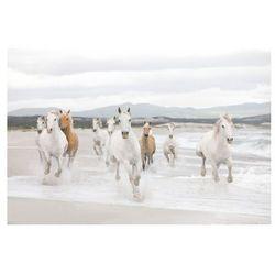 Fototapeta White Horses